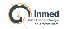 Inmed - back to the home page