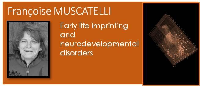 Muscatelli Team