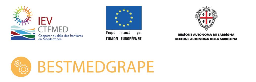 logo bestmedgrape